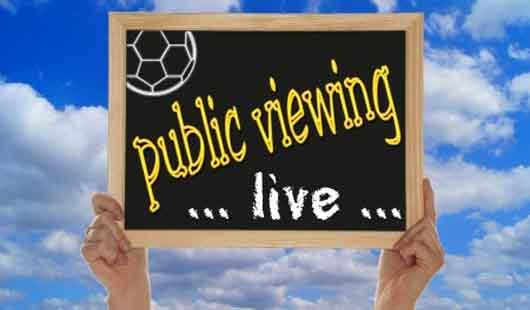 Public Viewing in Niedersachsen zur Fußball-WM 2010
