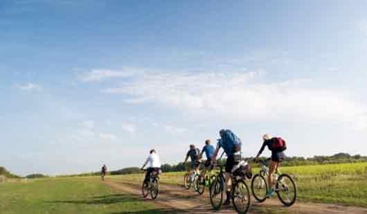Radwandern wird in Niedersachsen groß geschrieben