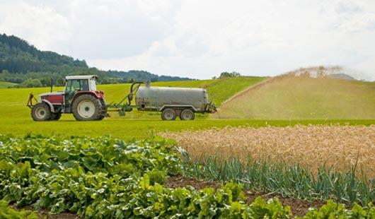 Niedersachsens Landwirtschaft düngt zu stark