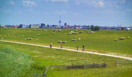 Nordenham ist eine Hafenstadt an der Wesermündung