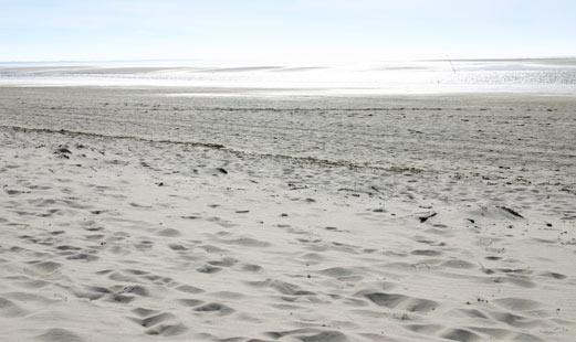 Strand am Wattenmeer in Niedersachsen
