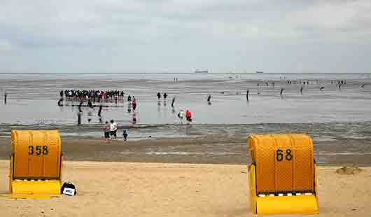In Cuxhaven ist eine Wattwanderung ein typischer Ausflug