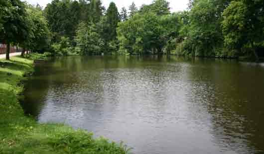 Teich im Kloster Loccum