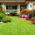 Rasen gehört zum Garten - Foto Clipdealer