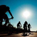 Ratgeber für Trekkingräder