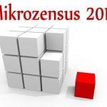 Mikrozensus 2017 in Niedersachsen