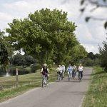 Typisch Aller-Leine-Tal: Fahrradtouren durch die Natur