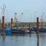 Hafen von Norddeich - Foto G. Dehne