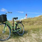 Radwandern auf der Dollard Route