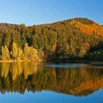 Ferienhaus im Harz - an einer Talsperre Urlaub genießen