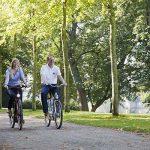 Radwandern in der Region Mittelweser