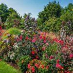 Wunderbare Gartenanlagen in Bad Zwischenahn - Foto: Park der Gärten